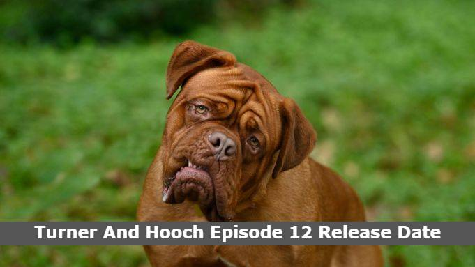 Turner And Hooch Episode 12 Release Date and Time, Countdown, When Is It Coming Out?